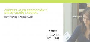 Curso Internacional Online Certificado y Acreditado de Experto/a en Promoción y Orientación Laboral