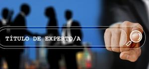 Curso Internacional Online Certificado y Acreditado: Título de Experto/a en captación y gestión directiva de fondos nacionales, europeos e internacionales.